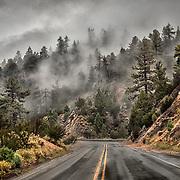 Fog on hillside driving up a mountain.
