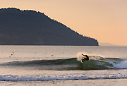 Surfer enjoys a nice 3-5 foot west swell with offshore winds, at the Elwha River mouth west of Port Angeles, WA.