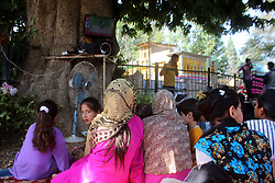 June 18, 2017 - Anantnag, Jammu and Kashmir, India - Young Girls watching Indo-Pak match and cheering for Pak Cricket Team on the Road side with television installed inside a Chinar Tree in Nathpora Khanbal in Anantnag Town. (Credit Image: © Muneeb Ul Islam/Pacific Press via ZUMA Wire)