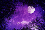 Dreamy night sky with milky way, moon and stars in ultraviolet - photo manipulation<br /> Redbubble Prints: http://rdbl.co/2jvNJnD<br /> Society6 products: http://bit.ly/2k8h1rW