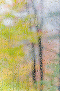 Abstract design of rain droplets on a house window during an October storm, Cheshire County, New Hampshire, USA