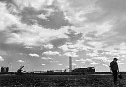 """brindisi - cerano. coltivazione di carciofi sotto la centrale a carbone """"Federico II"""""""