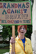 Anti Brexit protester, a grandma against Brixit in Westminster as inside Parliament the Tory leadership race continues on 17th June 2019 in London, England, United Kingdom.