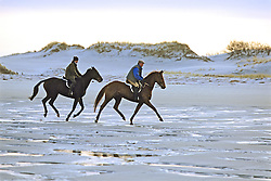 Horses And Riders On Beach