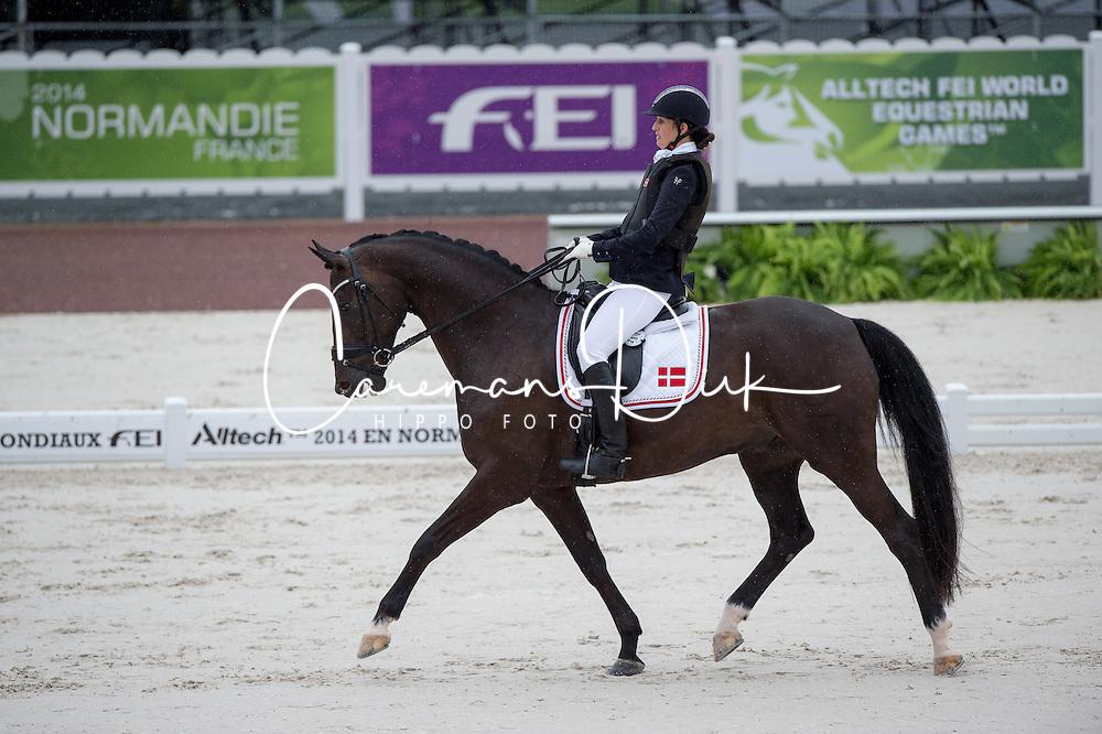 Annika Lykke Risum, (DEN), Aros A Fenris - Team Competition Grade III Para Dressage - Alltech FEI World Equestrian Games™ 2014 - Normandy, France.<br /> © Hippo Foto Team - Jon Stroud <br /> 25/06/14