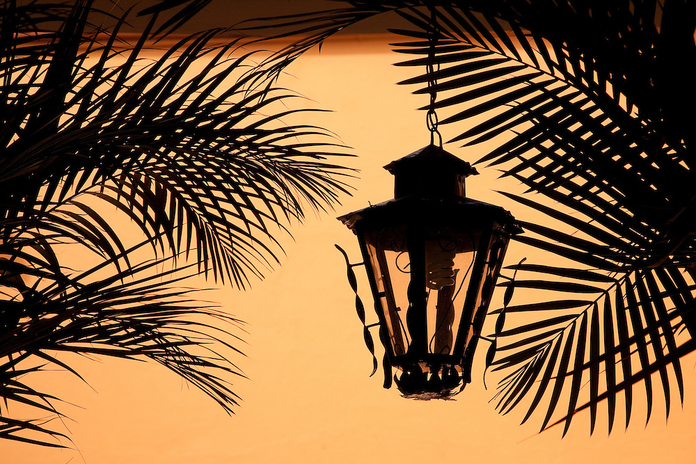 North America, Mexico, Oaxaca Province, Oaxaca, wrought-iron lantern and palm fronds (silhouette)