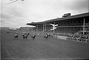 30/06/1962 <br /> 06/30/1962<br /> 30 June 1962<br /> Irish Sweeps Derby at the Curragh Racecourse, Co. Kildare. View of the crowd in the stand as the horses thunder by during a race on the day. Note the media box and television cameras mounted on the roof of the stand.