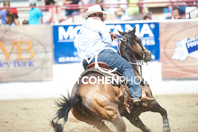 Team roper Blake Teixeira of Tres Pinos, CA competes at the Redding Rodeo in Redding, CA<br /> <br /> <br /> UNEDITED LOW-RES PREVIEW<br /> <br /> <br /> File shown may be an unedited low resolution version used as a proof only. All prints are 100% guaranteed for quality. Sizes 8x10+ come with a version for personal social media. I am currently not selling downloads for commercial/brand use.