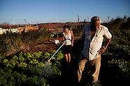 Brazil_Bahia's Wind Power