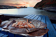 Seafood from Cape Clear Island off South West Cork.<br /> Picture by Don MacMonagle -macmonagle.com