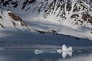 Ice floe, Svalbard, Spitzbergen, Arctic Norway