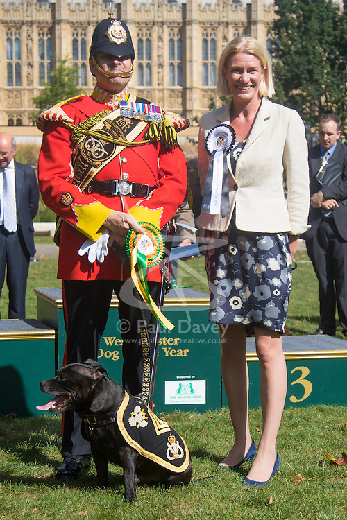 MPs and members of the House of Lords bring their pooches to Parliament as they compete to be crowned The Dogs' Trust and The Kennel Club's Westminster Dog Of The Year. PICTURED: Staffordshire terrier Sgt Watchman V the mascot of the people of Staffordshire and Greg Hedges together with Amanda Milling MP (conservative) Cannock Chase, after scooping the online vote as top dog.
