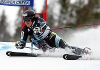 ALPINE SKIING - WORLD CUP 2010/2011 - BEAVER CREEK (USA) - 05/12/2010 - PHOTO : ALESSANDRO TROVATI / PENTAPHOTO / DPPI - MEN GIANT SLALOM - Kjetil Jansrud (nor)
