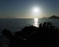 Utsikt mot havet fra øya Lopud i Kroatia.<br /> Foto: Svein Ove Ekornesvåg
