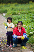 Woman picking flowers with child in Zhong Yong, near Guilin. China has a one child policy to limit population.