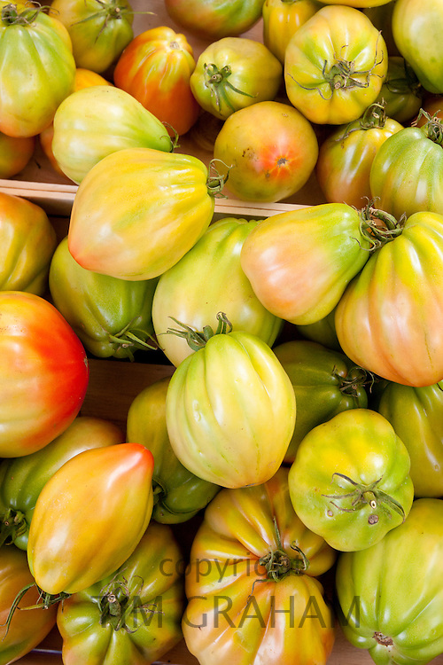 Fresh tomatoes, cuor di bue nostrale, on sale at weekly street market in Panzano-in-Chianti, Tuscany, Italy