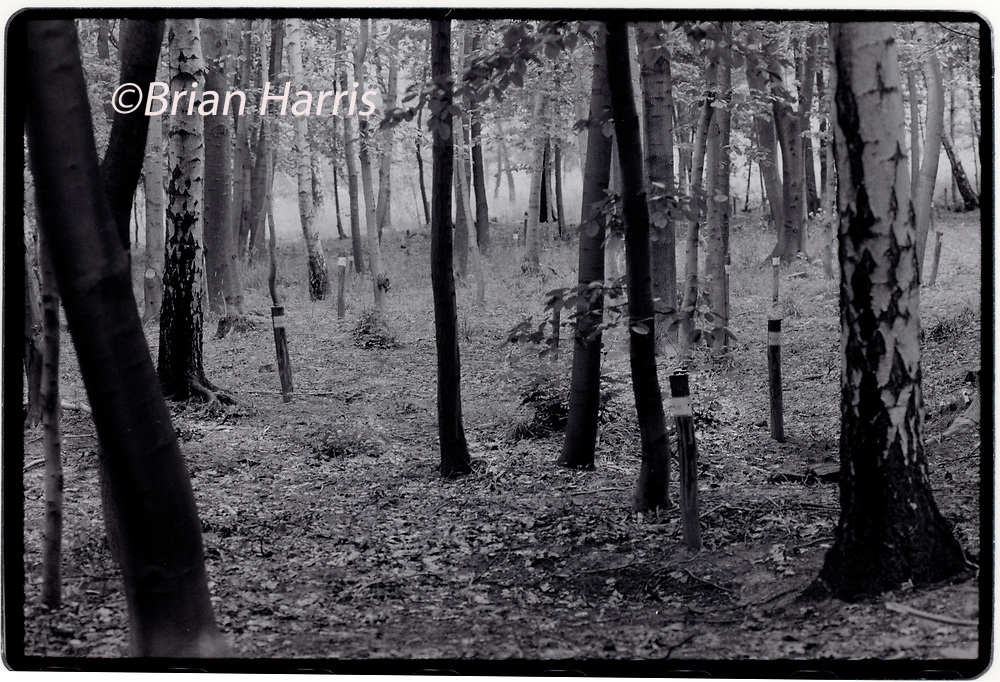 """Buchenwald Concentration Camp Weimar in Thuringia Germany 1994<br />In late 1989 after the fall of 'The Wall' graves revealled the remains of former Nazis imprissoned in Soviet Special Camp Number 2. Between 1990 and 1994 these graves were marked by metal steles and when named a cross was erected. Between 1945 and February 10, 1950, the camp was administered by the Soviet Union and served as Special Camp No. 2 of the NKVD.[1] It was part of a """"special camps"""" network operating since 1945, formally integrated into the Gulag in 1948"""
