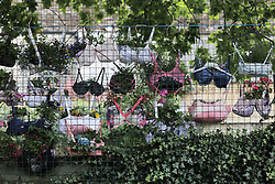© Under licence to London News Pictures. 21/08/2016. Bras turned into hanging baskets by the ladies of Shotley WI, on display at Shotley Church Hall at Snods Edge in Northumberland, UK. Members of Shotley Womens Institute have re-cycled bras to make hanging baskets for the national WI hanging basket competition, which will be judged this coming bank holiday weekend. The bras are made up of some of their own and some donated by local women. Photo Credit: Stuart Boulton/LNP