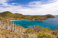 Grootpan Bay is a gorgeous bay on the southside of St. John, USVI within Virgin Islands National Park. This image was captured from the Cabritte Horn Spur Trail. The saltpond is  the largest on the island.