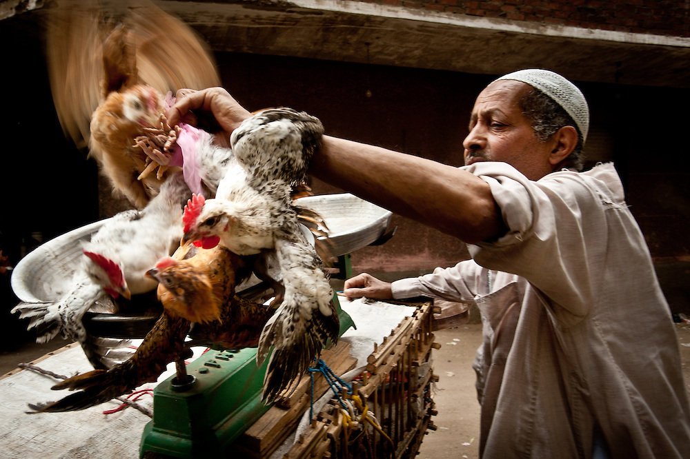 A chicken vendor weighs his product for a customer.