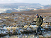 A hiker walks on a footpath over the North York Moors, North Yorkshire, UK