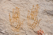 Prehistoric hand pictographs,<br /> Cave Spring Trail, Needles District of Canyonlands National Park, Utah, USA.
