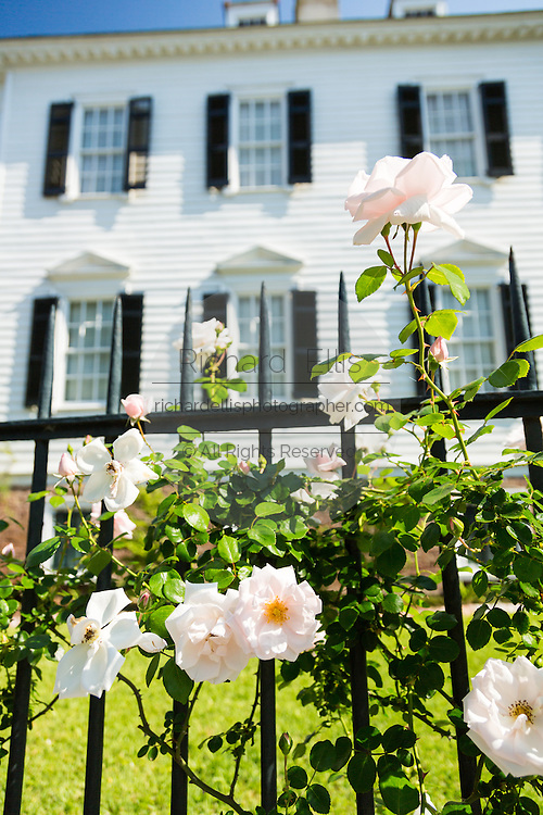 Climbing roses at the Thomas Savage House on South Battery in historic Charleston, SC.