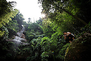"""A Chinese tourist checks his smartphone in a natural spot with a waterfall in the Bamboo Sea in Yibin, August 06, 2014.<br /> <br /> Shunan Bamboo Sea (Chinese: 蜀南竹海;pinyin: shǔnánzhúhǎi) covers an area of over 120 kilometers in Sichuan Province.<br /> This forest has won its fame for its unique green and graceful trees: bamboos are here, there and everywhere.<br /> It is one of the shooting places of the Oscar award- winning movie """"Crouching Tiger, Hidden Dragon"""" directed by Ang Lee.<br /> <br /> © Giorgio Perottino"""