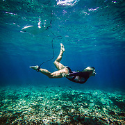 Female surfer swimming in the clear blue ocean under her board between sets in the Kingdom of Tonga.