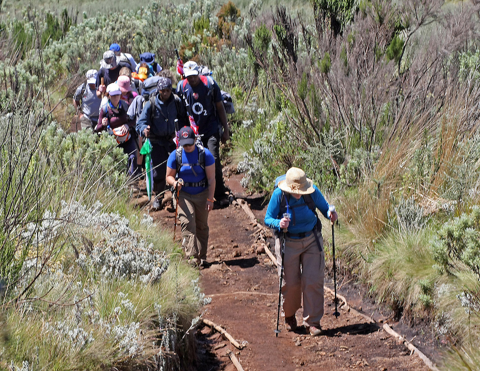 The climb begins in the rainforest and moves to a meadow with the flora and fauna changing with every hour. Climbers experience several ecosystems on the way up the mountain.