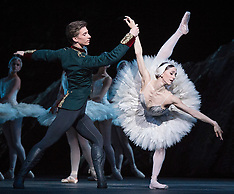 Swan Lake Royal Ballet 16th May 2018