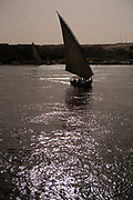 Felucca, an Egyptian sailboat, under sail on the Nile river