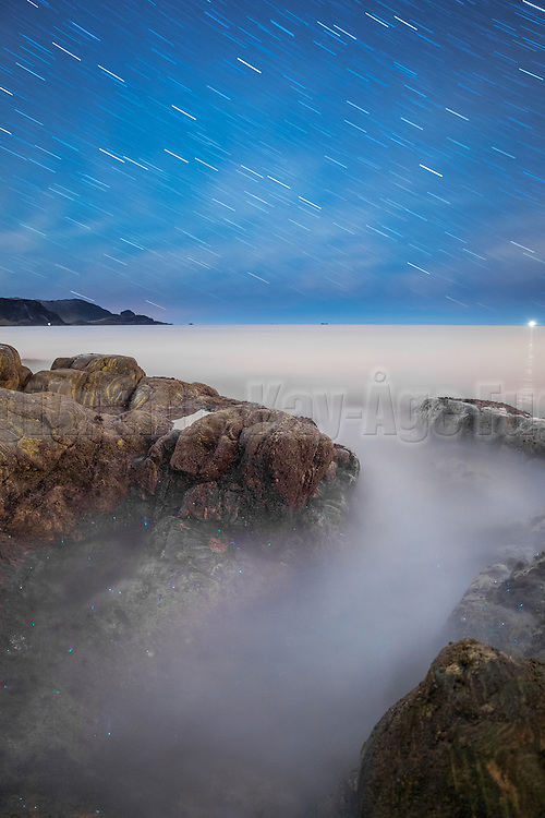 Startrails with phosphorescence in the sea | Stjernespor med morild i sjøen