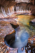 """Winter in """"The Subway"""", Left Fork of North Creek. Zion National Park, Utah."""