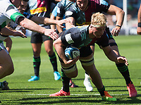 Rugby Union -2020/2021 Gallagher Premiership - Round 22 -<br />Harlequins vs Newcastle Falcons - The Stoop<br /><br />Jack Kenningham in action against Newcastle Falcons