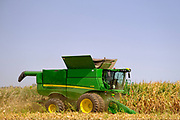 "14 SEPTEMBER 2020 - WINTERSET, IOWA: A farmer harvest corn in his field northeast of Winterset, in Madison County, Iowa. The US Department of Agriculture recently lowered its corn and soybean outlooks because of a persistent drought in Iowa and parts of the Midwest. ""August was a month of extreme weather and climate disasters,"" USDA said in its monthly Crop Production report. ""There were also slow-motion events, such as worsening Western drought and a stripe across the Midwest and Northeast that experienced significant rainfall deficits."" Iowa's harvest was also hurt by the derecho wind storm in August, although that storm didn't hit Winterset.     PHOTO BY JACK KURTZ"