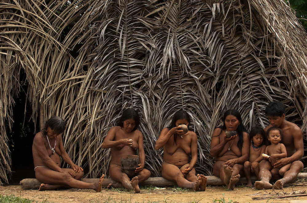 Huaorani, Meñemo Bopoga, Awame Gomoke, Ewa Kemperi, Dete Iteka and Boya Apika drinking chicha. This local brew is made from yuca. The woman chew it and then spit it into a bowl for fermenting. The alcohol content depends on the number of days it has been brewing.<br /> Bameno Community. Yasuni National Park.<br /> Amazon rainforest, ECUADOR.  South America<br /> This Indian tribe were basically uncontacted until 1956 when missionaries from the Summer Institute of Linguistics made contact with them. However there are still some groups from the tribe that remain uncontacted.  They are known as the Tagaeri & Taromenane. Traditionally these Indians were very hostile and killed many people who tried to enter into their territory. Their territory is in the Yasuni National Park which is now also being exploited for oil.