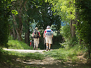 The Way of Saint James passed through lush green woodland before Auvillar in the Tarn and Garonne department of South-West France. There was a steady stream of pilgrims on the route, though it is not so popular as the Camino de Santiago in Spain.