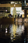Guests take photos with the Christmas Tree during the Christmas Tree Lighting Ceremony at the Milpitas City Hall's Civic Center in Milpitas, California, on November 30, 2015. (Stan Olszewski/SOSKIphoto)