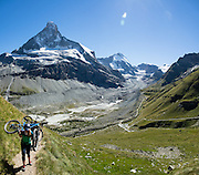 Mountain bikers carry bicycles up steep Höhbalmen Höhenweg trail, below Ober Gabelhorn (4063 m/13,330 ft) and Arben Glacier in the Pennine/Valais Alps, Switzerland, Europe. From Zermatt, hike the scenic Höhbalmen Höhenweg loop via Bergrestaurant Edelweiss, Trift Hut and Zmutt. With delightful views, this strenuous loop accumulates 1200 meters vertically, up and down over 21.6 km (13.4 miles). This image was stitched from multiple overlapping photos.