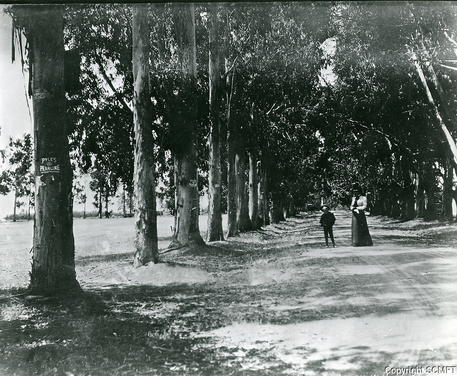 1902 Melrose Ave., looking west from Western Ave.