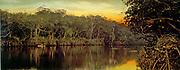 Florida, sunset on the Ocklawaha. photomechanical print : photochrom, colour.  c1899.  by  William Henry Jackson, 1843-1942, photographer.