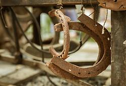 THEMENBILD - alte, rostige Hufeisen, aufgenommen am 25. August 2019, Piesendorf, Österreich // old, rusty horseshoes on 2019/08/25, Piesendorf, Austria. EXPA Pictures © 2019, PhotoCredit: EXPA/ Stefanie Oberhauser