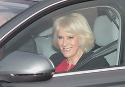 The Duchess of Cornwall arrives for the Queen's Christmas lunch at Buckingham Palace, London.