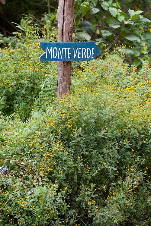 Goncalves_MG, Brasil...Placa de indicacao da cidade de Monte Verde em Goncalves...A sign for indicating Monte Verde town in Goncalves...Foto: LEO DRUMOND / NITRO.....