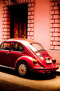 Mexican Beetle
