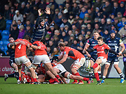Saracens scrum-half Richard Wigglesworth clears from the base of a ruck as Sale Sharks second-row Andrei Ostrikov tries to charge down during the Aviva Premiership match Sale Sharks -V- Saracens at The AJ Bell Stadium, Salford, Greater Manchester, England on November  20  2016. (Steve Flynn/IOS via AP)