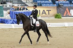 Sibbesen Henrik Weber (DEN) - Rexton Royal<br /> Alltech FEI World Equestrian Games <br /> Lexington - Kentucky 2010<br /> © Hippo Foto - Leanjo de Koster