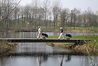 NAARDEN - Golfbaan Naarderbos