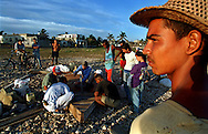 8/1994-Al Diaz/Miami Herald-- In their frenzy to leave Cuba during the summer of 1994, people were seen demolishing their homes and making vessels out of the debris. That year. Cuban balseros turned the tiny fishing village of Cojimar into a major point of embarkation for thousands seeking a better life.